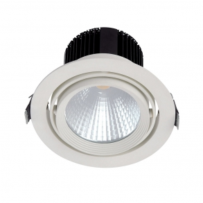2400 lumens pivotable LED downlight